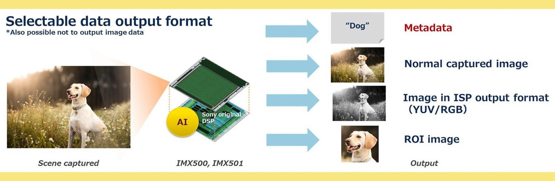 Sony sensori intelligenza artificiale