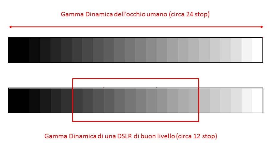 Gamma dinamica