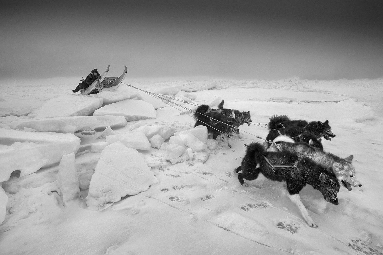 Leica Oskar Barnack Award 2020 finalisti