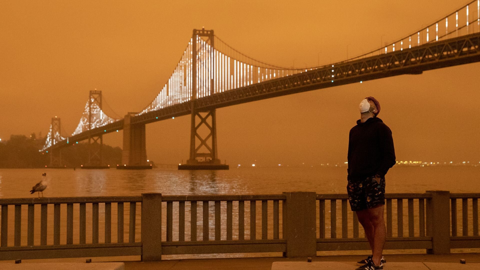 Incendi e nubi di fumo in america